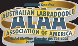 Red Rock Doodles ALAA Logo